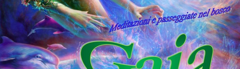 Locandina Gaia 2014